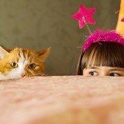 Spelletjes voor katten: kat met meisje