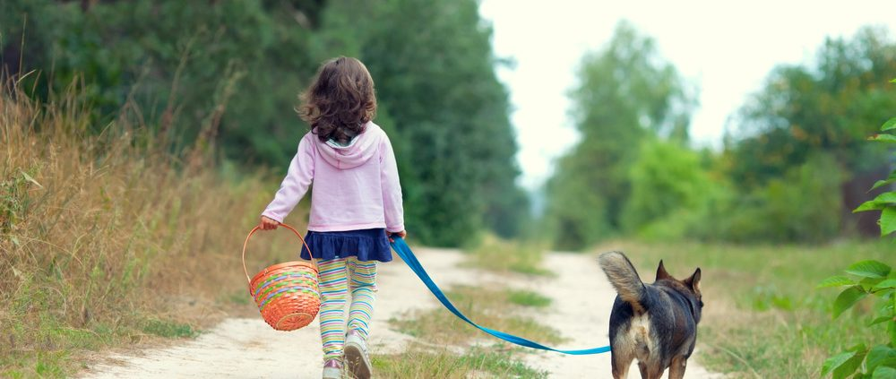 Wandelroutes met hond: dog with little girl walking in woods