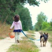 Wandelroutes met hond: dog with little girl walking in woods