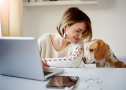 Hond wennen aan alleen thuis zijn