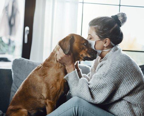 Coronavirus bij huisdieren